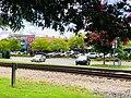 Busy Opelika Downtown.jpg