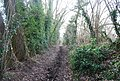 Byway, West of Buston Manor - geograph.org.uk - 1158510.jpg
