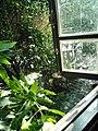 Cà phê lâu đài đá Tân Phú (Khung Cảnh) (2).jpg
