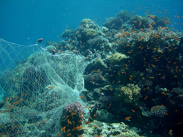 abandoned fishing net on coral reef