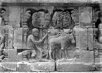 Agriculture in Indonesia - The bas-relief in 8th century Borobudur depicting farmer plowing the field pulled by buffalo