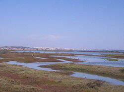 View of Caño de Sancti Petri from Chiclana with San Fernando in the background