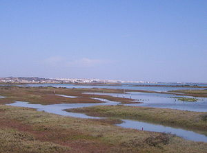 Bay of Cádiz - View of Caño de Sancti Petri from Chiclana with San Fernando in the background