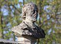 Caen buste de Saint-Jean Eudes.JPG