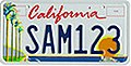 California Arts Council license plate.jpg