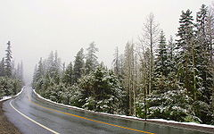 California State Route 88.jpg