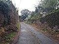 Camino Primitivo, acercando a Lugo.jpg