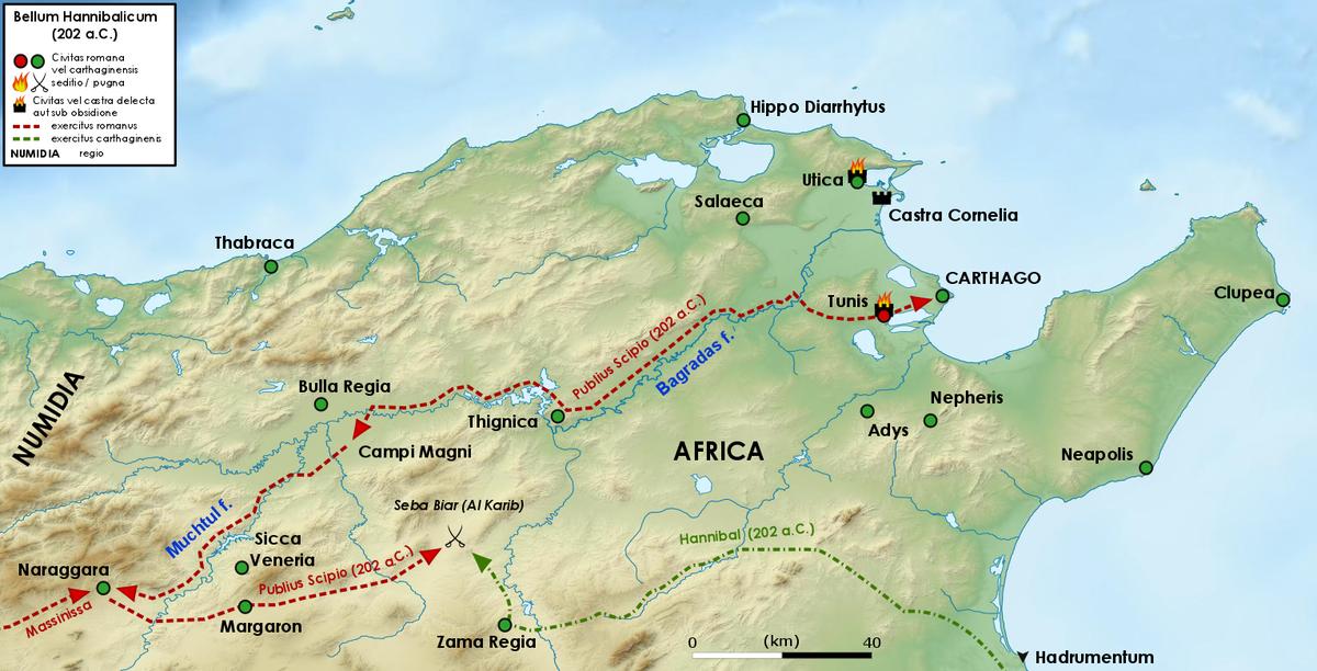 Battle of Zama   Wikipedia