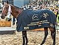 Campeones-de-la-Rural-2000.jpg