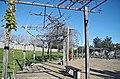 Campo das Amoreiras - Lisboa - Portugal (40051789643).jpg