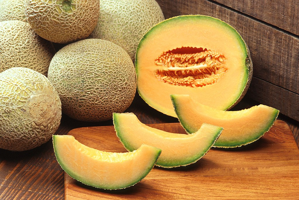 Image result for cantaloupe