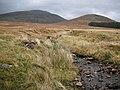 Caochan Riabhach - geograph.org.uk - 1553231.jpg