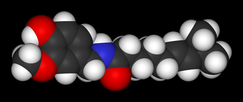 Capsaicin molecule