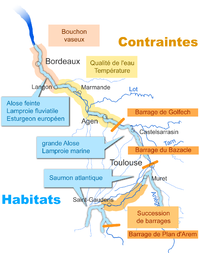 Carte Fleuve Bordeaux.Garonne Vikidia L Encyclopedie Des 8 13 Ans