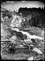 Cascada del barranc d'Aigües Pases i bosc en un vessant d'una muntanya.jpeg