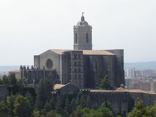 Catedral Girona from Montjuic