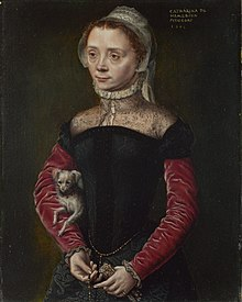 Caterina van Hemessen Portrait of a Woman with a Dog.jpg