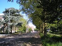Catharijnesingel Utrecht Nederland.JPG