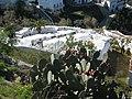 Cementerio Sayalonga.jpg