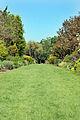 Centenary Border @ Sir Harold Hillier Gardens (3562407653).jpg