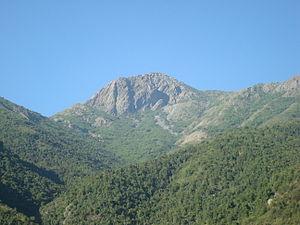 Cerro La Campana - Image: Cerro La Campana