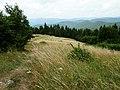 Cestou z Vyšehradu - panoramio.jpg