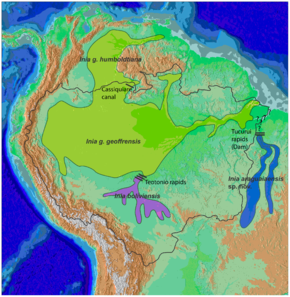 Description de l'image  Cetacea_range_map_Amazon_River_Dolphin.PNG.