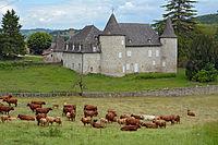 Château d'Entraygues DSC 4074.JPG