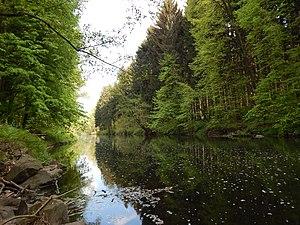 Chemnitz (river) - Image: Chemnitzfluss Richtung Eisenbahnbrücke