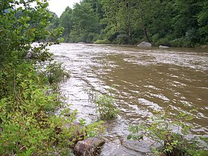 Cherry River (West Virginia) - Cherry River in Nicholas County after heavy rains