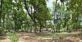 Chhatimtala - South-eastern View - Santiniketan 2014-06-28 5205-5208.tif
