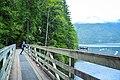 Chilliwack Lake outlet.jpg
