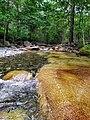 Chistovodnoe river water.jpg
