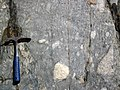 Clast-rich mixtite (Coleman Member, Gowganda Formation, Paleoproterozoic, ~2.3 Ga; Percival Lake roadcut, Ontario, Canada) 6 (40760516343).jpg
