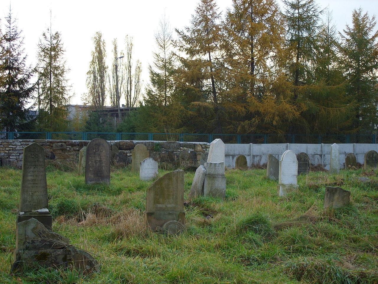 Cmentarz Żydowski Żywiec 06.JPG