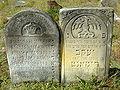 Cmentarz żydowski w Żarkach20.jpg