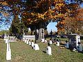 Cmentarz nr 270 Bielcza 2.jpg