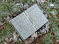 Cold reading (5396035903).jpg