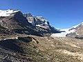 Columbia Glacier Jasper NP 4571.jpg
