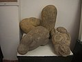 Concretions in Colombia - P9151649 (45324113354).jpg