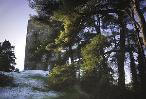 Conna - Conna Castle viewed from the east