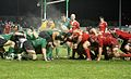 Connacht v Munster 27-12-2010 - Scrum.jpg