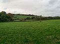 Country Side-Somerset - panoramio.jpg
