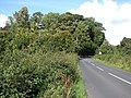 Country road to Lower Braidwood - geograph.org.uk - 528335.jpg