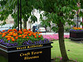 Craft Town Blooms West Kilbride - panoramio.jpg