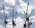 Cranes (35533349005).jpg