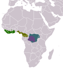 Crossarchus areas.png