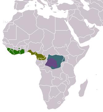 Crossarchus areas