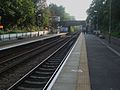 Crouch Hill stn looking west.JPG