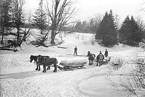 Ice cutting - Icecutters in Toronto, Ontario, Canada, 1890s